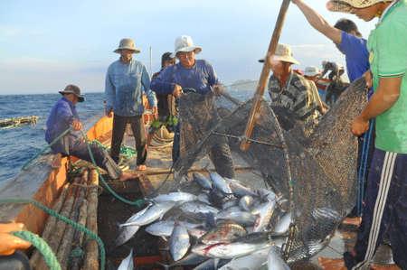 NHA TRANG, VIETNAM - MAY 5, 2012: Fishermen are collecting tuna fish caught by trawl nets in the sea of the Nha Trang bay Редакционное