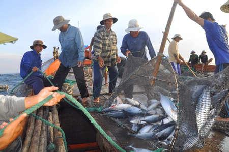NHA TRANG, VIETNAM - MAY 5, 2012: Fishermen are collecting tuna fish caught by trawl nets in the sea of the Nha Trang bay Editorial