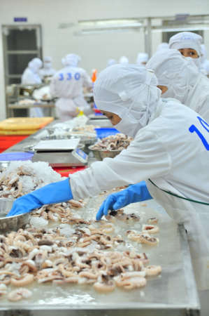 VUNG TAU, VIETNAM - DECEMBER 9, 2014: Workers are classifying octopus for exporting in a seafood processing factory