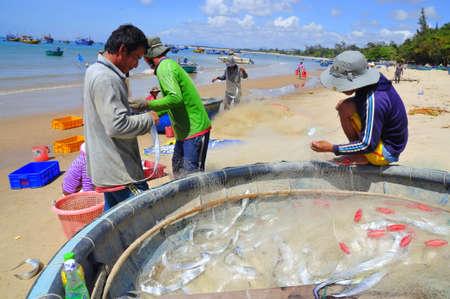 redes de pesca: LAGI, VIETNAM - 26 de febrero de 2012: Los pescadores locales son la eliminaci�n de los peces de sus redes de pesca en la playa Lagi