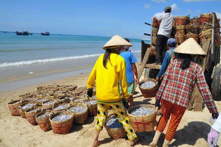 fischerei: LAGI, VIETNAM - 26. Februar 2012: Lokale Frauen Hochladen der Fischerei auf den LKW zum Verarbeitungsbetrieb in Lagi Strand Editorial