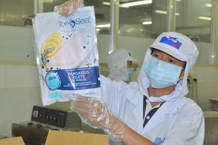 countervailing duty: TIEN GIANG, VIETNAM - MARCH 2, 2013: A Worker is showing a certified pangasius fish product in a seafood processing plant in Tien Giang, a province in the Mekong delta of Vietnam Editorial