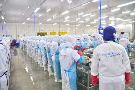PHAN RANG VIETNAM  DECEMBER 29 2014: Workers are peeling and processing fresh raw shrimps in a seafood factory in Vietnam
