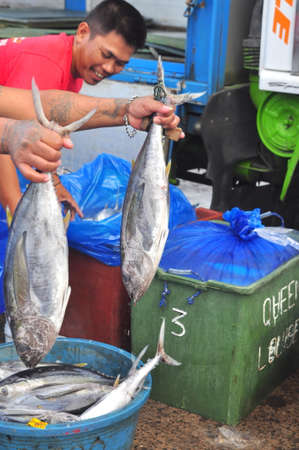 thunnus: General Santos, Philippines - September 5, 2015: Workers are working at the seafood market at seaport Editorial
