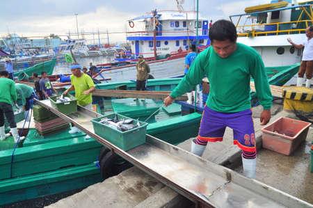 pescador: General Santos, Filipinas - 5 de septiembre de 2015: Los pescadores están aterrizando atún de barcos de pesca en el mercado