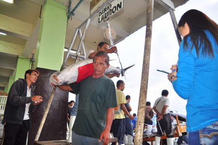 thunnus: General Santos, Philippines - September 5, 2015: Fisherman is weighing tuna to sell to the market