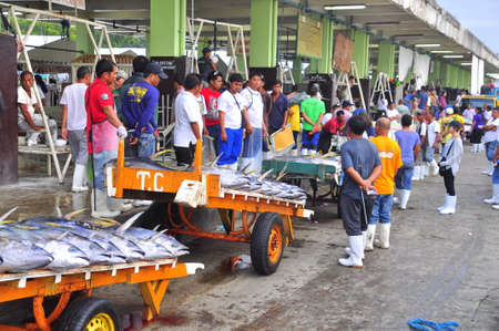 thunnus: General Santos, Philippines - September 5, 2015: Sellers anf buyers are bargaining for tuna at the seafood market