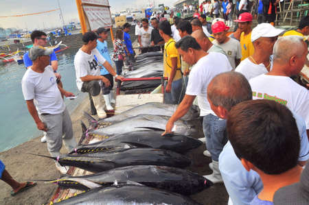 thunnus: General Santos, Philippines - September 5, 2015: Fishermen are selling their tuna at the seafood market