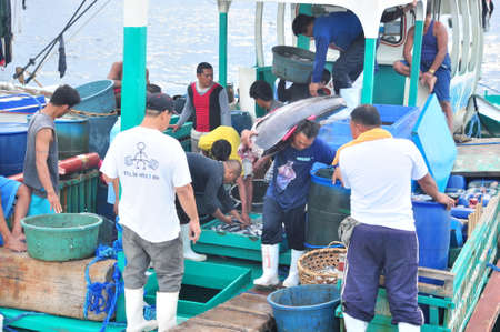 General Santos, Philippines - September 5, 2015: Fisherman are landing tuna from fishing boat at the seaport