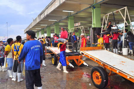 thunnus: General Santos, Philippines - September 5, 2015: Tuna are being sold at the seafood market at the seaport