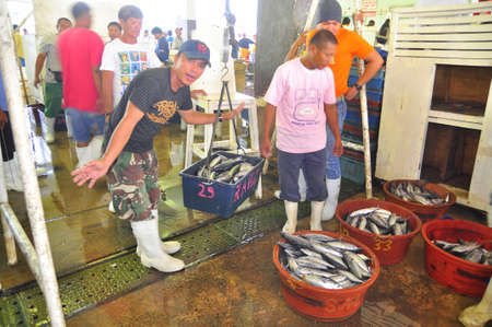 thunnus: General Santos, Philippines - September 5, 2015: Fishermen are weighing tuna at the seafood market