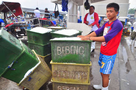 thunnus: General Santos, Philippines - September 5, 2015: Workers are shaving ice at the seaport