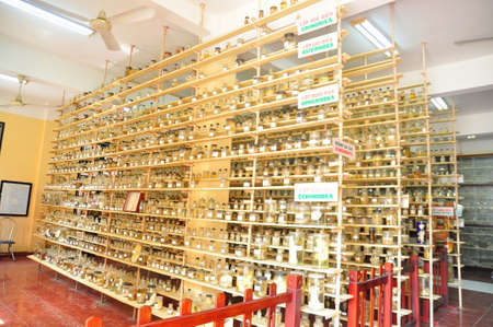 fish exhibition: Nha Trang, Vietnam - February 9, 2016: Mummified specimen of all kinds of fish and sea life in liquid are stored and showed to tourists at the Vietnam Institution of Ocean in Nha Trang city Editorial