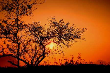 The dawn in Vietnam Stock Photo