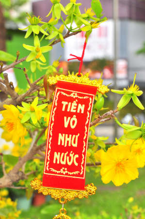 Slogan for the Tet new year Stock Photo