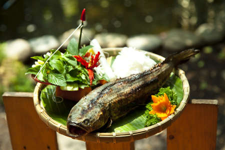 Grilled snake head fish Stock Photo