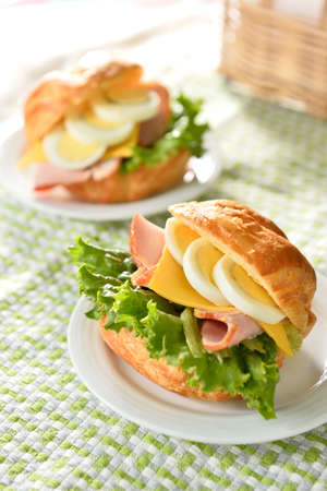 Overflowing Wheat crisp French bread, crackers surface, tight internal taste with  muscle ham, cheese, eggs and green aroma of fresh vegetables