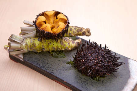 Sushi of tsuraku or sea urchin, a marine echinoderm that has a spherical or flattened shell covered in mobile spines