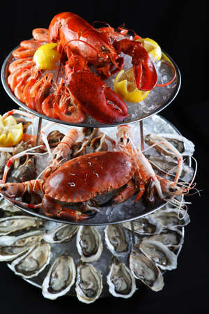 Seafood buffet with lobster, oyster, crabs and mantis shrimps on ice tray in black background