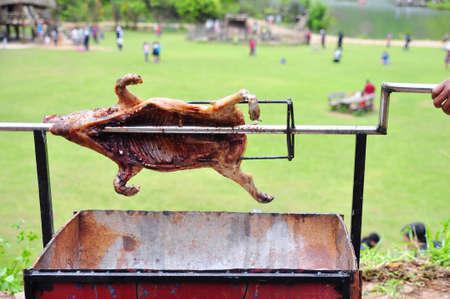 Ganzes Schwein auf heißer Holzkohle im Dorf in Vietnam grillen