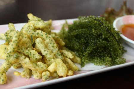 튀긴 Caulerpa lentillifera 해 초 bryopsidale 녹색 조류의 종입니다. 스톡 콘텐츠