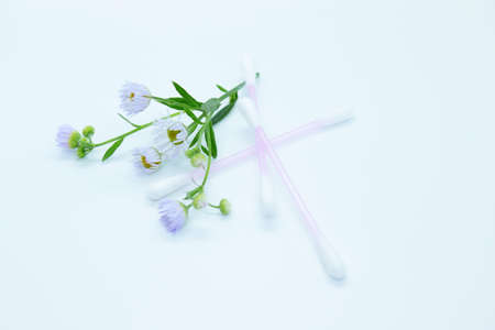 Cotton sticks and flowers are located on a white background