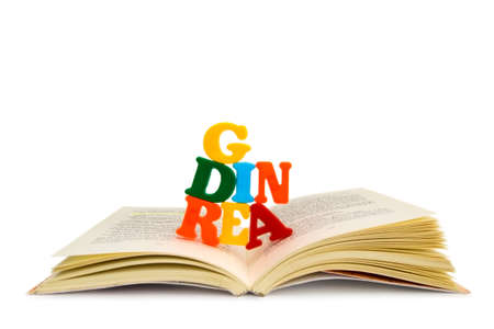 READING - An open book, from which letters emerge, creating the word ?READING?.