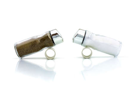 battle of the sexes: THE RIVALS 1 - Salt and pepper shakers confronting each other.