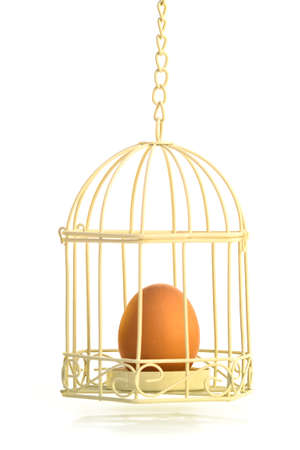 PROTECTION - An egg placed inside a bird-cage for protection.