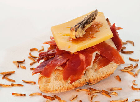 serrano: Serrano ham on toast with cheese and eatable cricket.