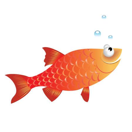 poisson rigolo:  Illustration de poissons dr�le sur fond blanc