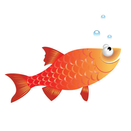 colorful fish:  illustration of funny fish on white background