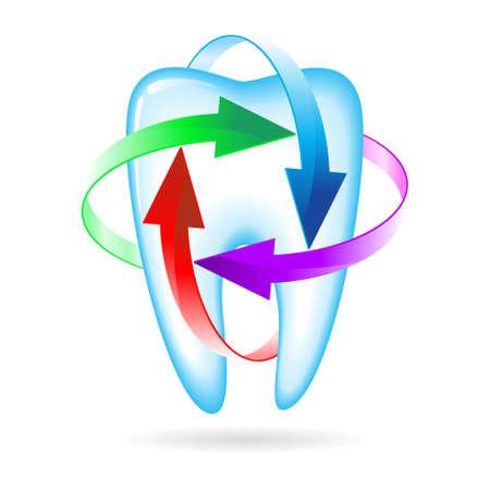 fluoride: Icono de protecci�n de hierbas y fluoruro de un diente