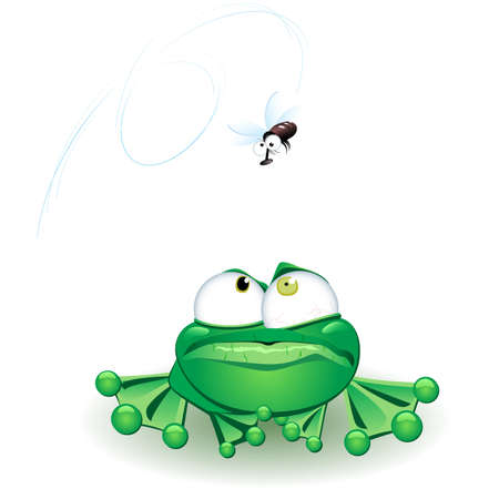 amigos comiendo: Rana con flie. Ilustraci�n vectorial sobre fondo blanco Vectores