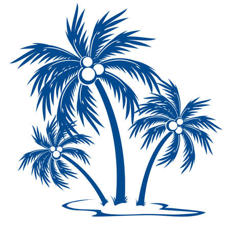 on palm tree: Silhouette Palm trees with coconuts. One-colour  symbol on white.