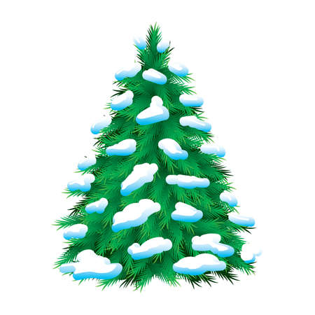 Green fur-tree covered with snow, isolated. Christmas picture  Vector