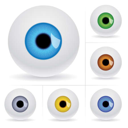 round eyes: Eye balls. Vector illustration on white background