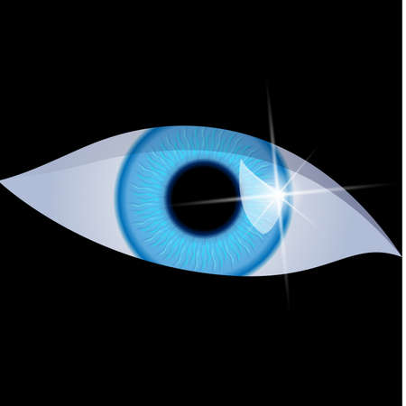 Human eye isolated on a black background. Vector illustration Vector