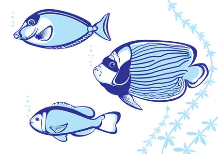 Tropical Fish. Vector illustration on white background for design Vector