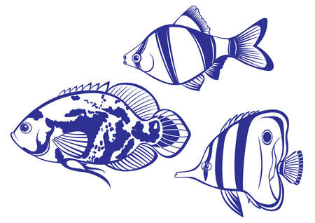 Tropical Fish. Set #2 Vector illustration on white background for design Vector