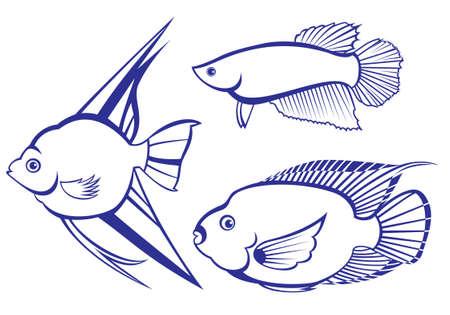 peces de agua salada: Peces tropicales. Conjunto # 3. Ilustraci�n vectorial sobre fondo blanco para el dise�o Vectores
