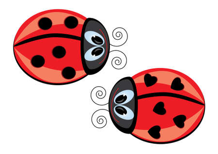 ladybug cartoon: Two Ladybugs. Vector illustration on white background