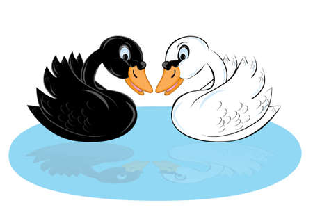 Two cartoon swans of black and white color Stock Vector - 9081120
