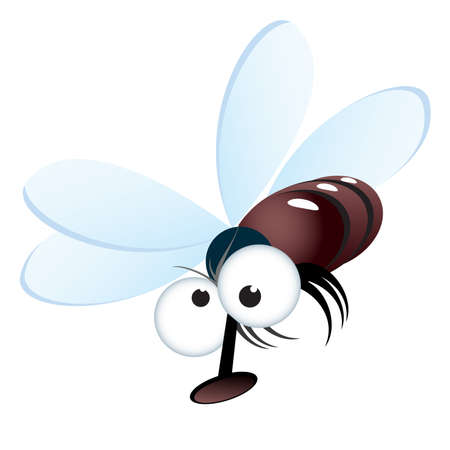 insect flies: Cartoon style illustration of a fly. Vector illustration on white