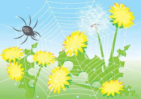 Cartoon spider and dandelions. Illustration for design Stock Vector - 9157036