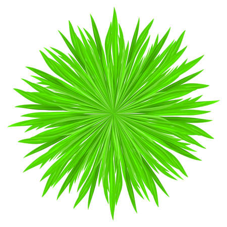 Vector illustration of grass frame. Green circle Stock Vector - 9231569