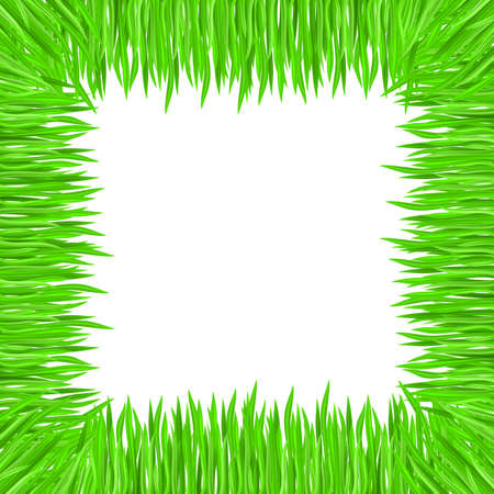 Vector illustration of grass frame. Green square Vector