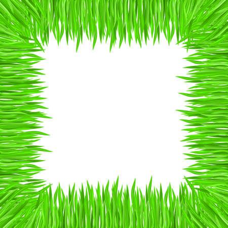 Vector illustration of grass frame. Green square Stock Vector - 9231567