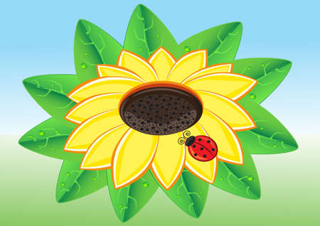 Illustration of Red Ladybug on a Warm Yellow Sunflowe Vector