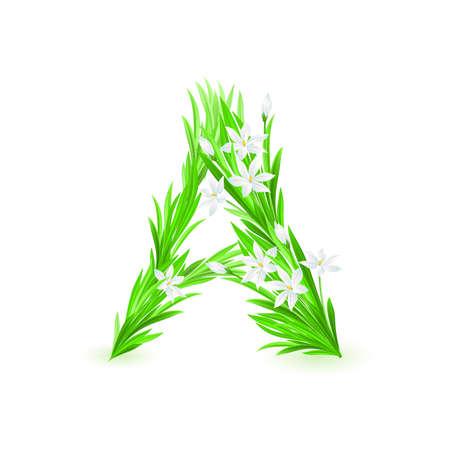 One letter of spring flowers alphabet - A. Illustration on white background Stock Vector - 9262039